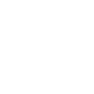 icons8-settings-2048 (1).png